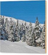 Alpine Winter Wood Print