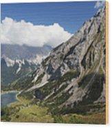 Alps Austria Wood Print
