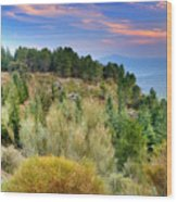 Alpujarras Forest At Sunset Wood Print