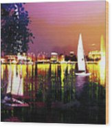 Alster In The Evening Wood Print