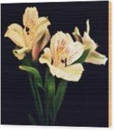 Alstroemeria Sprig Wood Print