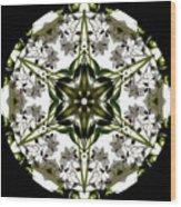 Alstroemeria Wild 1 Wood Print