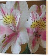 Alstroemerias - Heralding Wood Print