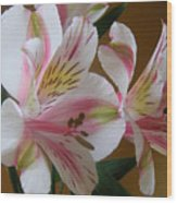 Alstroemerias - Listening Wood Print