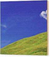 Altai Wood Print