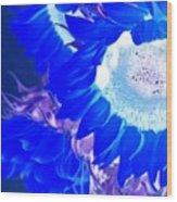 Alternate Reality Sunflower Wood Print