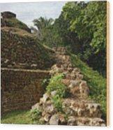 Altun Ha Maya Ruins Wood Print