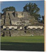 Altun Ha Mayan Temple Wood Print