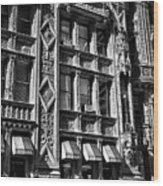 Alwyn Court Building Detail 14 Wood Print