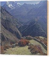 Ama Dablam Nepal In November Wood Print