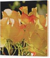 Amarillo 003 Wood Print