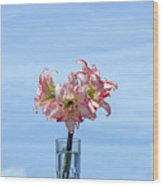 Amaryillis Belladonna Against The Spring Florida Sky Wood Print