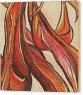 Amaryllis Bulb Wood Print
