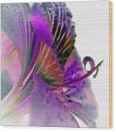Amaryllis Butterfly II Wood Print