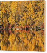 Amazing Autumn Wood Print