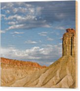 Amazing Mesa Verde Country Wood Print by Christine Till