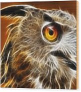 Amazing Owl Portrait Wood Print