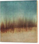 Amber And Blues Wood Print