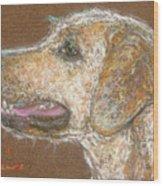 Amber Wood Print by Suzie Majikol Maier