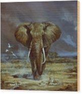 Amboseli Bull Elephant Wood Print