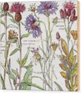 Ambrosia IIi Wood Print