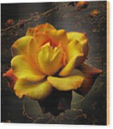 Ambrosia Wood Print