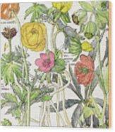 Ambrosia Vi Wood Print