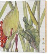 Ambrosia Xii Wood Print