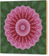 America Climbing Rose Kaleidoscope Wood Print