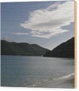 America Point Cinnamon Bay St John Usvi Wood Print