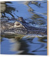 American Alligator  Wood Print