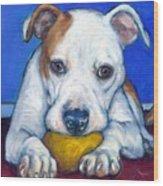 American Bulldog With Yellow Ball Wood Print