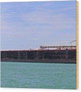 American Century Panorama 2 051818 Wood Print