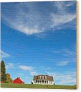American Dream Home Wood Print