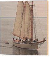 American Eagle Sail Wood Print