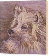 American Eskimo Dog Wood Print