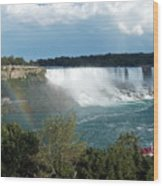 American Falls 1 Wood Print