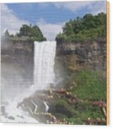 American Falls At Niagra Wood Print