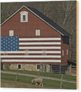 American Flag Painted On The Side Wood Print