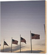 American Flags On The Mall Wood Print