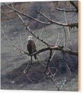 american idol II Wood Print
