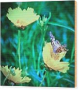 American Lady On Coreopsis Wood Print