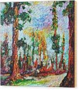 American National Parks Redwood Trees Wood Print