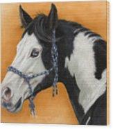 American Paint Horse - Soft Pastel Wood Print