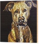 American Pitbull Wood Print