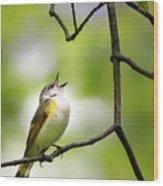 American Redstart Female 2 Wood Print