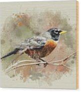 American Robin - Watercolor Art Wood Print