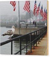 American Seagull Wood Print