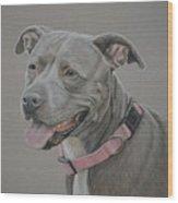 American Staffordshire Terrier Wood Print