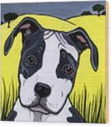 American Staffy Wood Print by Leanne Wilkes